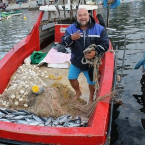 Морето завря от паламуд, рибари вадят тонове край Царево